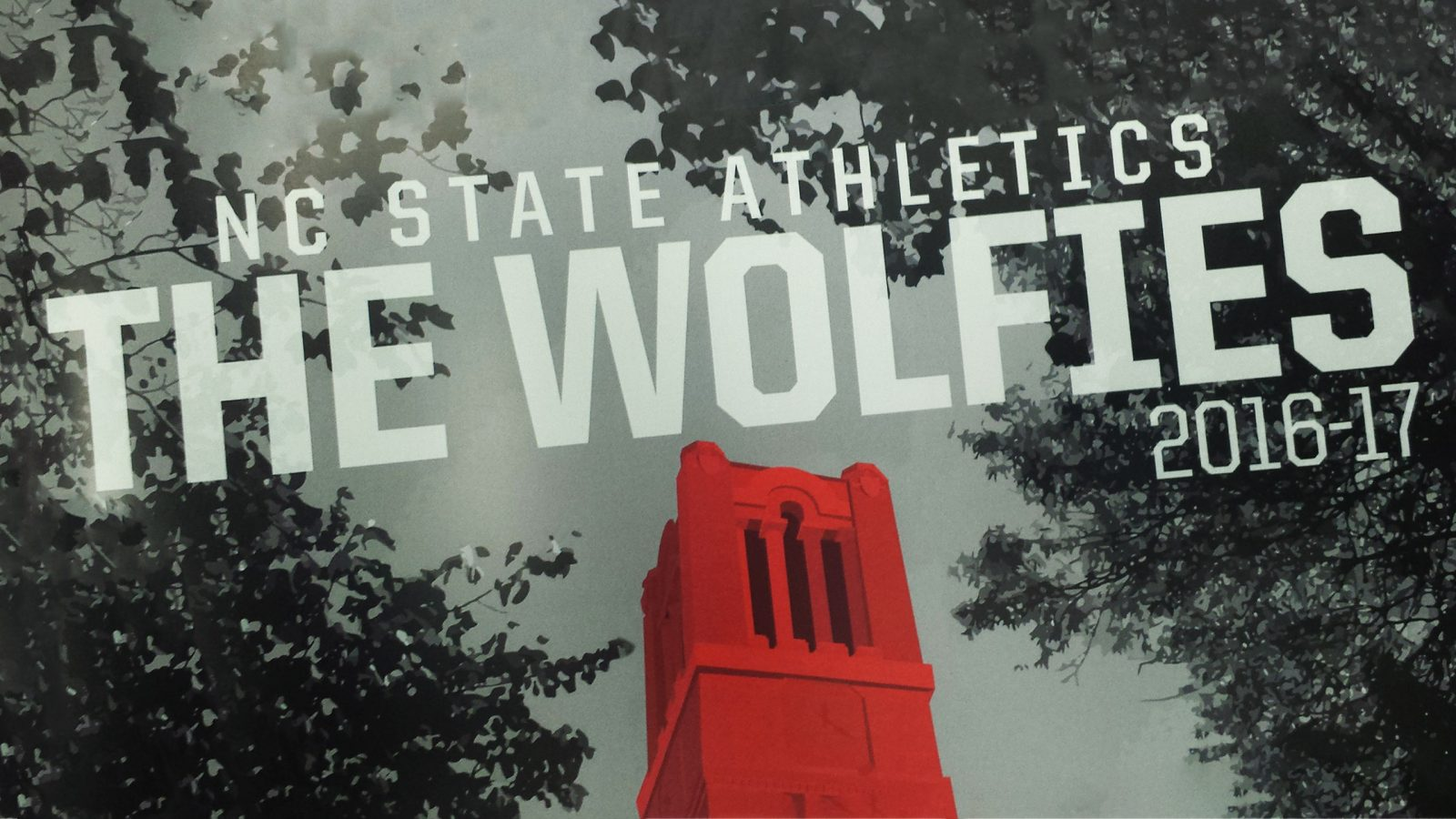 ISE scholar-athletes shine at the Wolfie Awards