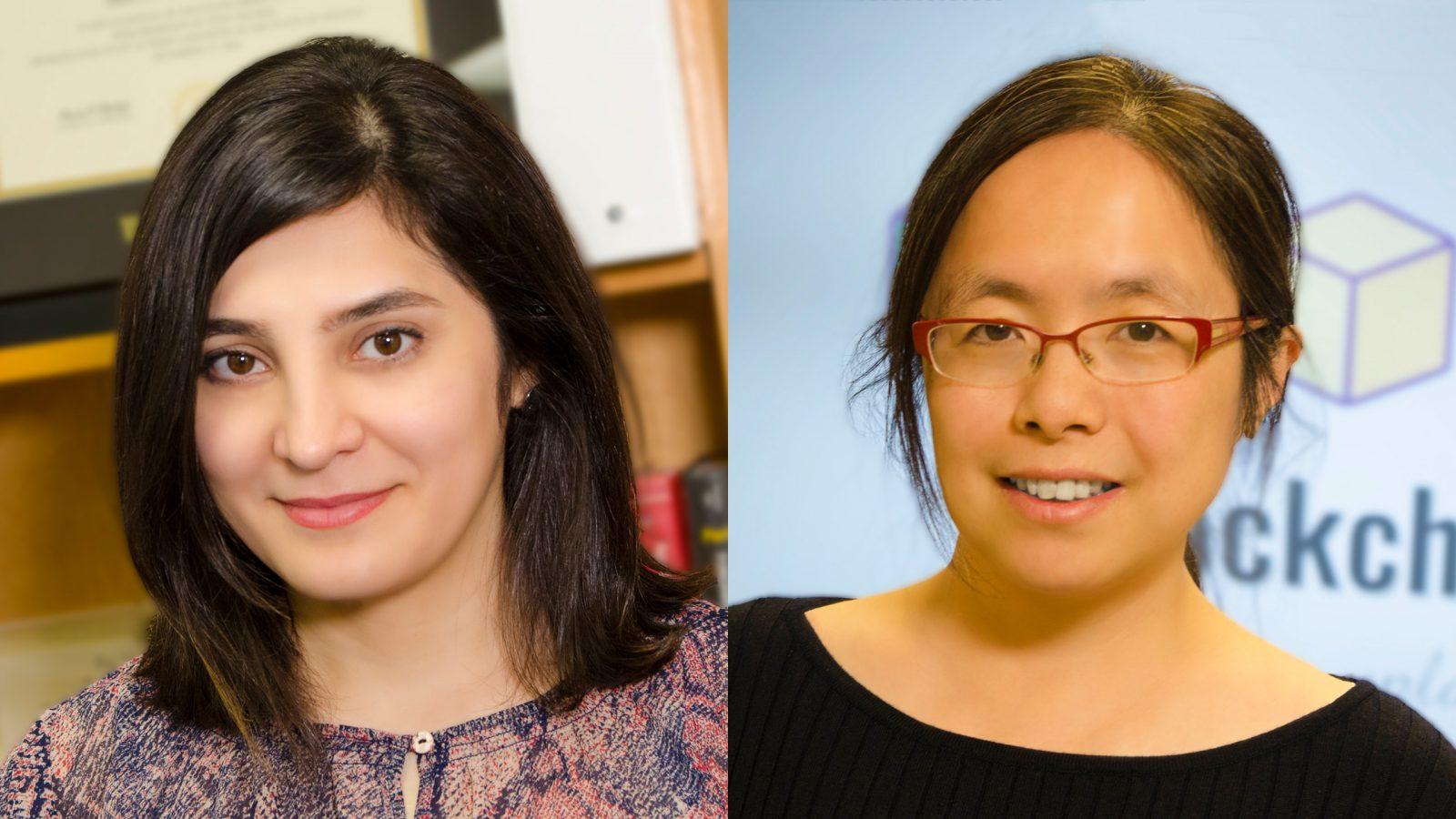 Welcome New Data Analytics Faculty Members | Sara Shashaani | Hong Wan