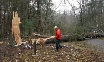 Research Helps Volunteers Do the Most Good After a Disaster