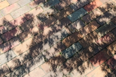 The solar eclipse cast cresent-shaped shadows on the bricks outside of Daniels Hall